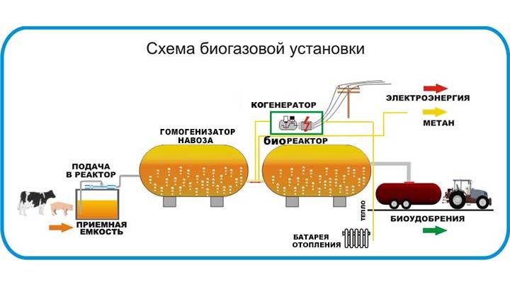 Отходы пустят метан Алтайском крае планируют запустить биореакторы