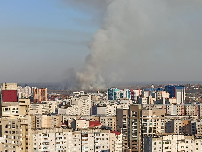 Шашлыки удались Барнауле берегу разгорелся крупный пожар
