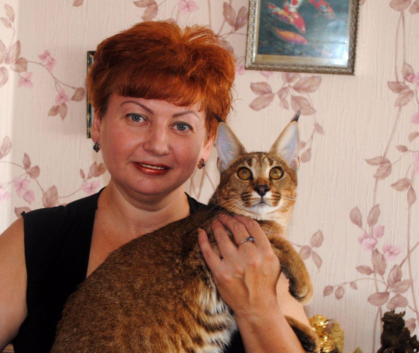 Малышка на миллион: женщина променяла автомобиль на самую дорогую кошку в мире