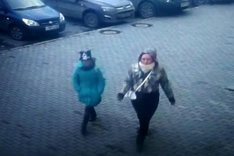 Подозреваемая вбарнаульских кражах девочка прибыла сгрызуном-подельником издругого региона