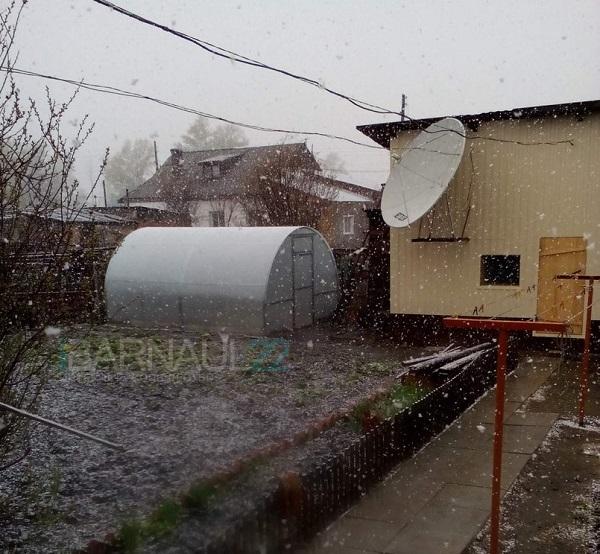 ВАлтайском крае вближайшие сутки опять штормовой ветер, снегопады идожди