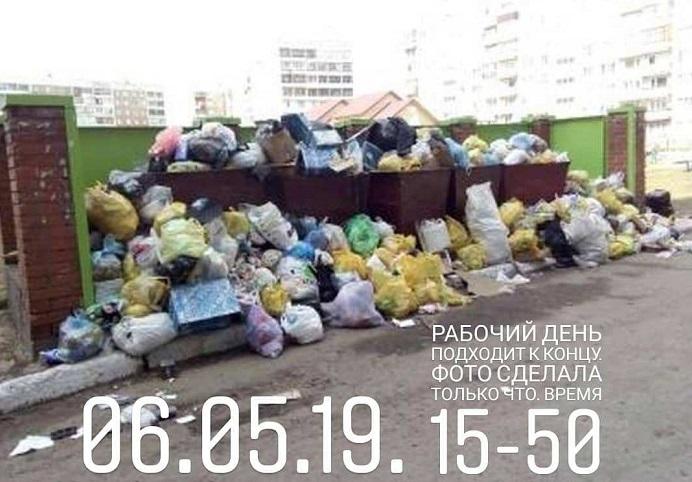 Жители Заринска пожаловались засилье крыс воронья утопающем мусоре городе