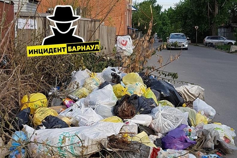 Творите беспредел единороссы местные власти назвали ответственных провал мусорной реформы Алтайском крае