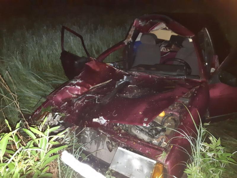 Автомобилист скончался после встречи коровой алтайской трассе