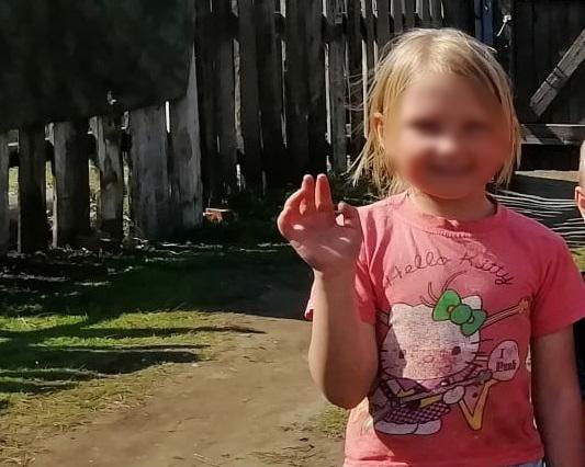 Жители Бийска просят помощи поисках упавшей быструю реку семилетней девочки