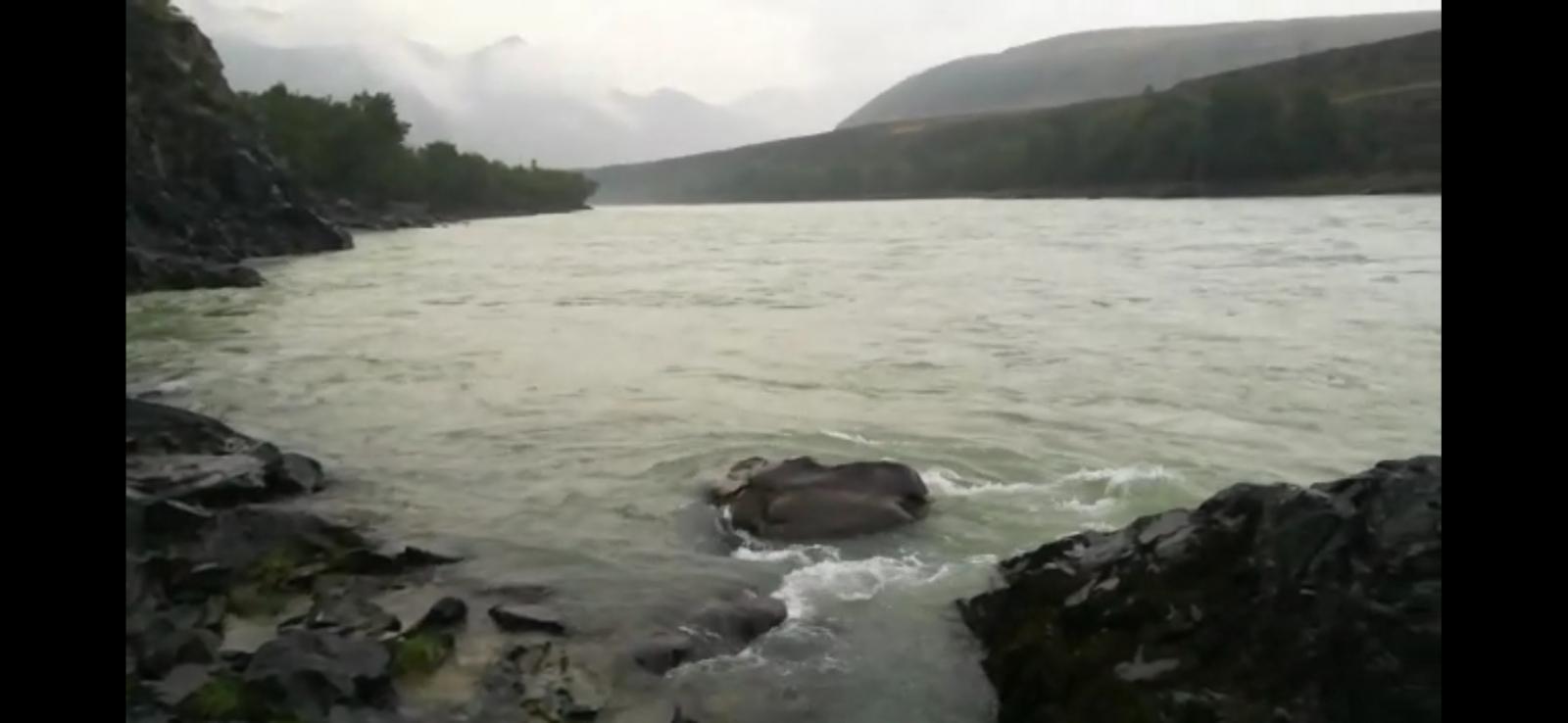 Тело утонувшего Алтае двухлетнего ребенка обнаружили камнем Катуни