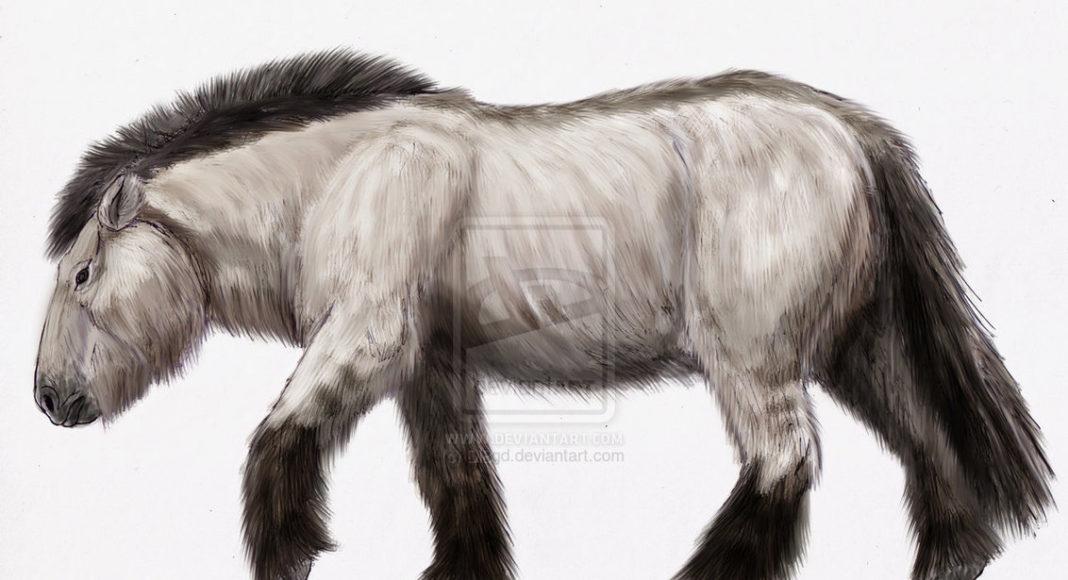Найденный речном песке Камне-на-Оби огромный принадлежал животному плейстоцена