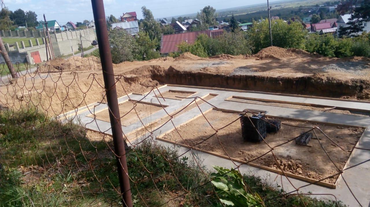 Мэрия Барнаула назвала законными рубки сосен земле ленточного бора