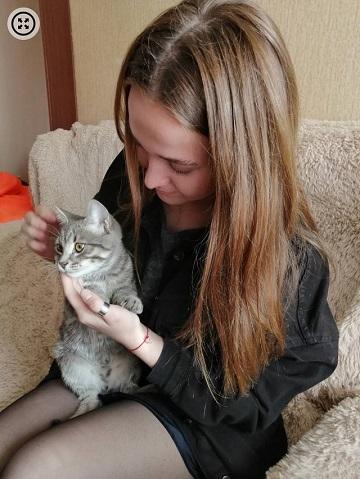 Питался поролоном барнаульцы спасли запертого квартире котенка голодной смерти
