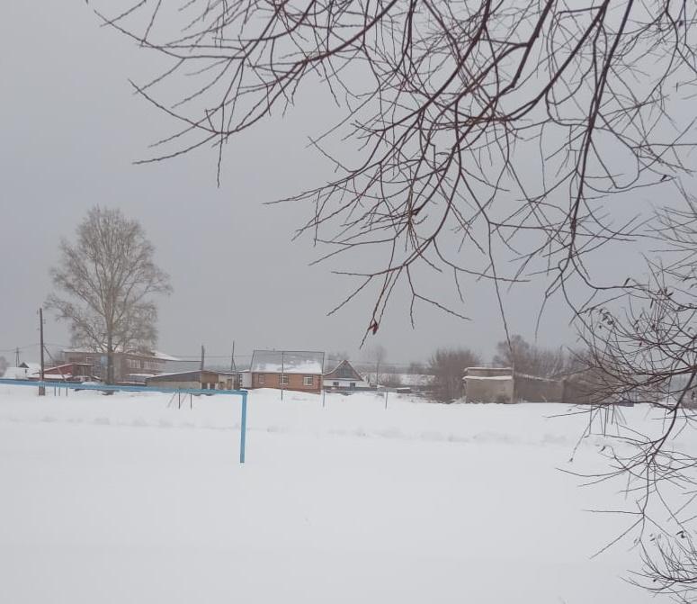 Депутат Алтайского Заксобрания пожалуется прокуратуру брешь безопасности сельской школы