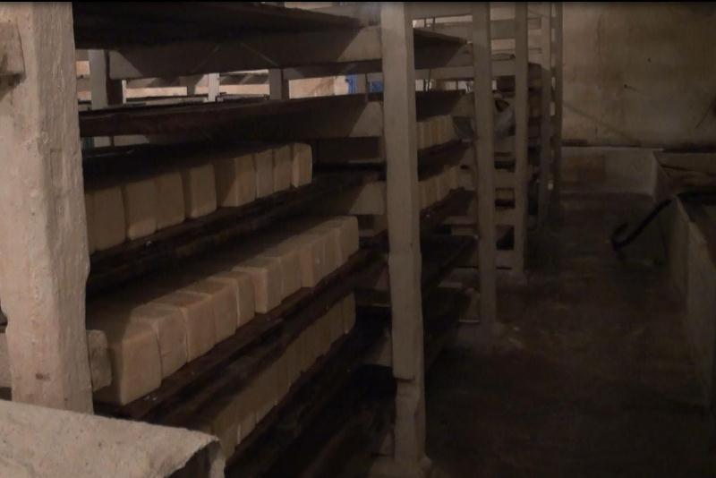 Членов сырной из Алтайского края ждет за миллионные хищения молочной продукции производства