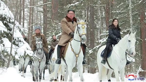 Эксперт указал алтайскую родину белогривого коня Чен Ына