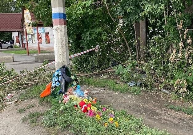 Родные погибшего колесами пьяной автоледи мальчика Новоалтайска требуют внимания трагедии