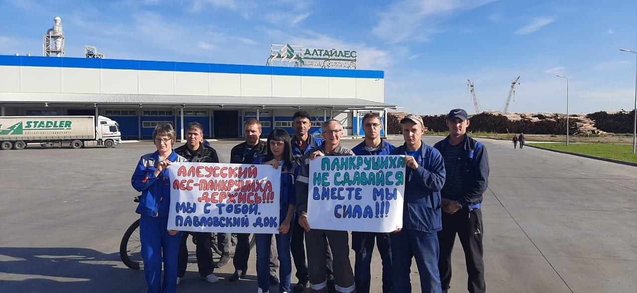 Лесные предприятия Алтайского края выступили поддержку рискующих лишиться работы коллег