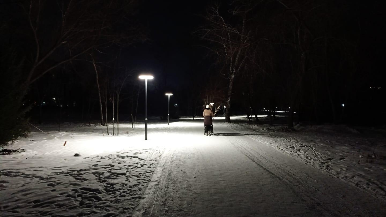 Возрождающийся барнаульский парк Изумрудный осветят сотней новых фонарей