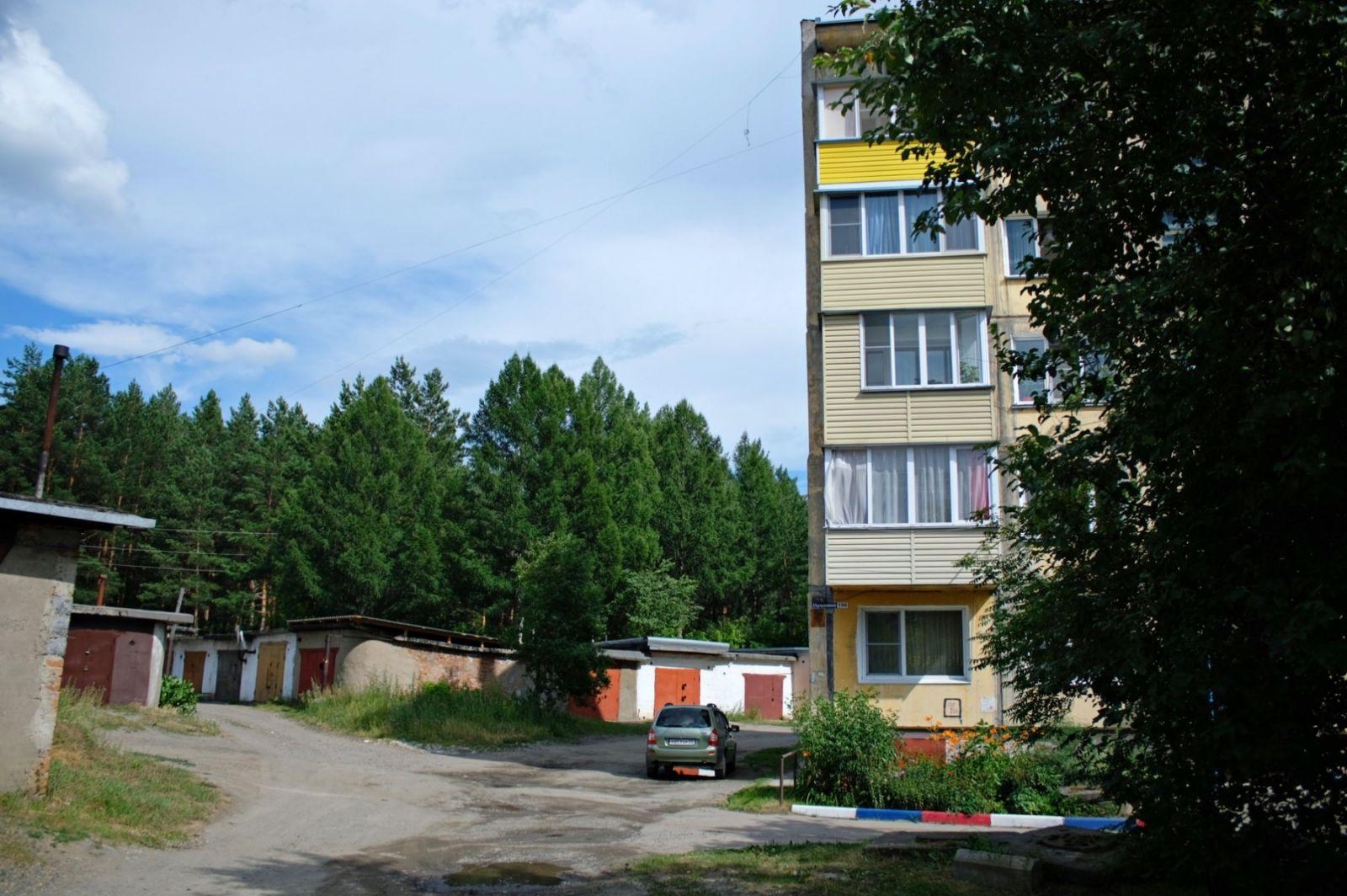 Мэрия Бийска попытается отстоять суде попадающий масштабные рубки городской лес