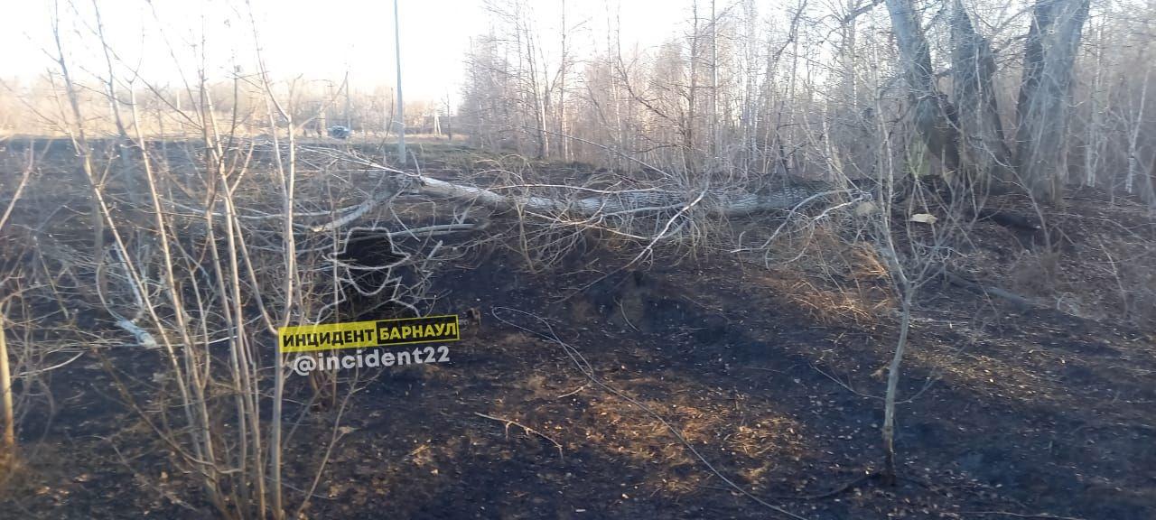 Мощный ветер снова потрепал улицы Барнаула имущество горожан