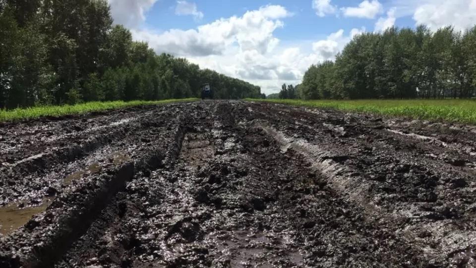 Жители Алтайского края пытаются добиться властей нормальной дороги вместо направления между селами